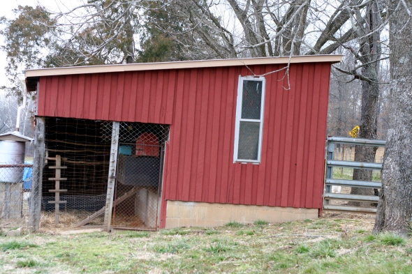 "A view from the yard. On the right is the ""inside coop"" on the left is an ""outside coop"" area attached."