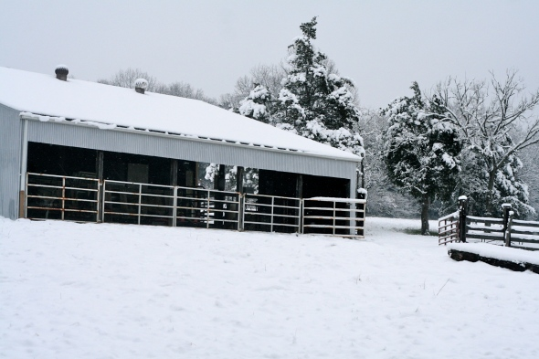 Our barn and snow covered pasture