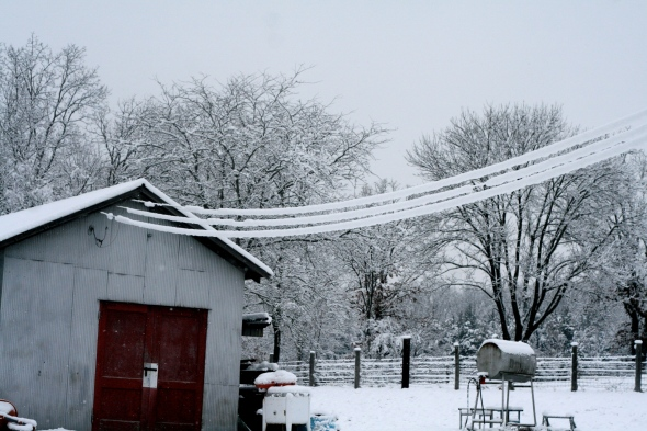 Power lines covered in snow