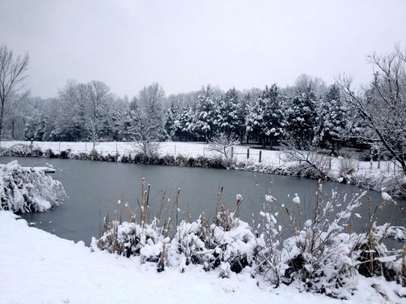 Ice fishing anyone?