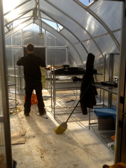 Constructing greenhouse benches from wire shelving.
