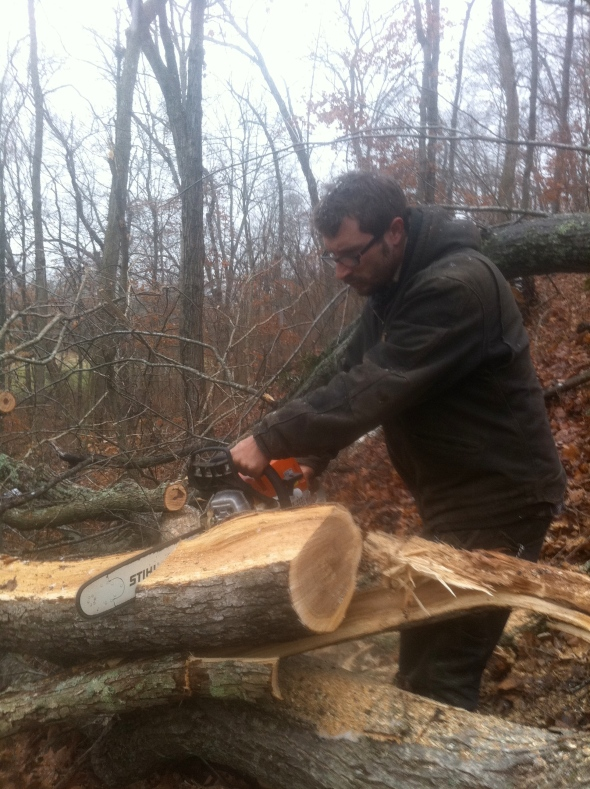 Here's Dave cutting up the tree in 18in pieces for firewood.