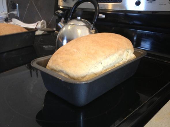 Making homemade sandwich bread