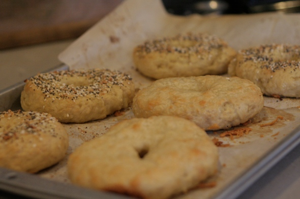 Making homemade asiago bagels and everything bagels from scratch.