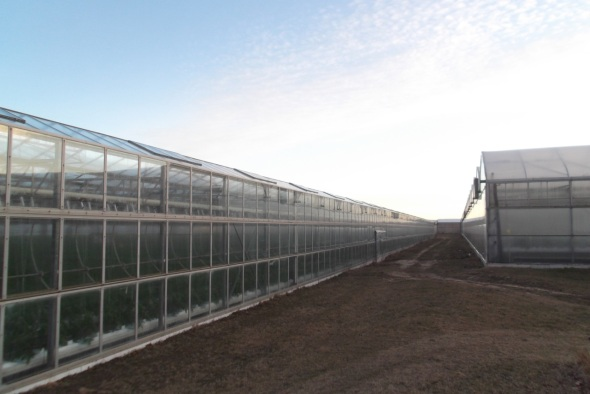 They're not joking around with the greenhouses.
