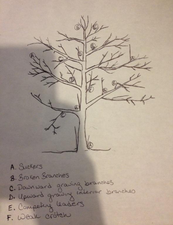 Here's my crappy diagram.