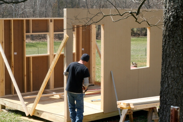 Building new chicken coops