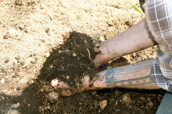 When it's all said and done, we're left with beautiful black nutrient rich garden soil!