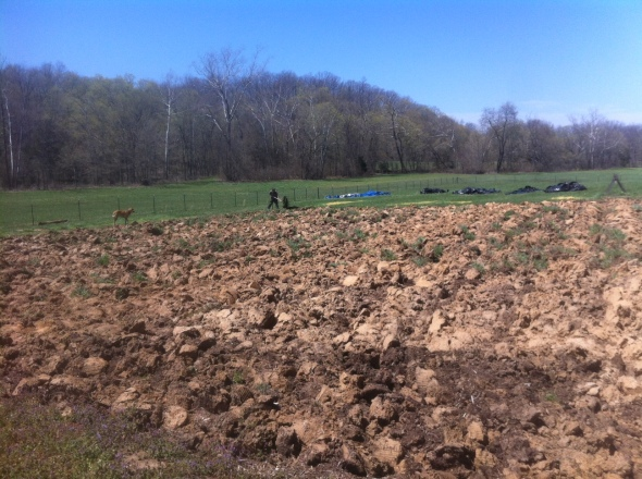 The garden is plowed and dry enough to till