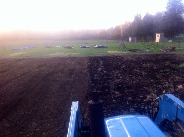 On the left: after tilling. On the right: Before tilling