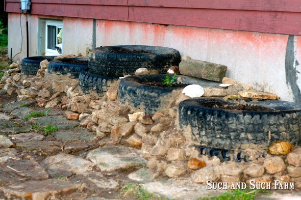 The tire planters with rocks and stone path