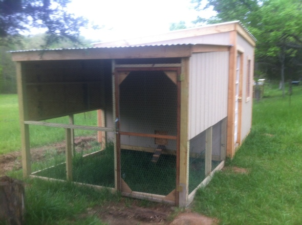 building a chicken coop with outdoor covered run