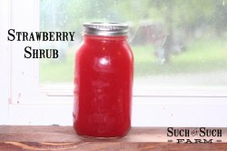 making homemade strawberry shrub