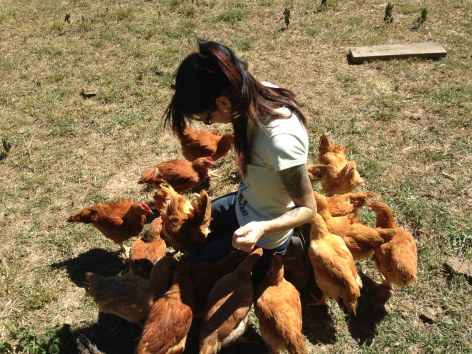 Farmer Connie and her pasture raised chickens!