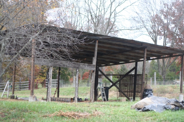 We usually have some big construction projects going on every fall, this year it's the new goat barn! We'll be converting this existing pole barn into a goat barn for meat/dairy goats.